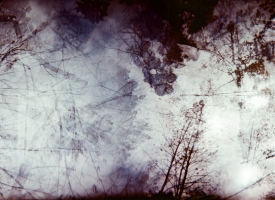 Quintan Ana Wikswo / Aurora and the Storm / Archival Print on Hahnemuhle Rag / 40