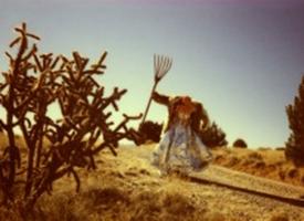 Wikswo-Carcass-Image-002-010117