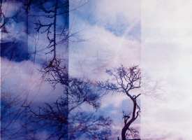 Quintan Ana Wikswo / FOSSOYEUR GRAVEDIGGER Triptych Panel 1 / Archival Print on Hahnemuhle Photo Rag / 40