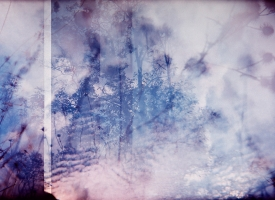 Quintan Ana Wikswo / FOSSOYEUR GRAVEDIGGER Triptych Panel 2 / Archival Print on Hahnemuhle Photo Rag / 40