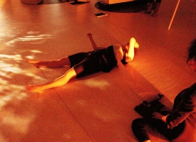 Wikswo / Six Nights Sleeping in Ignaz Gunther Haus / Performance