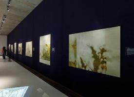 bild-18Wikswo / Sonderbauten: The Special Block / Jewish Museum Munich Exhibition