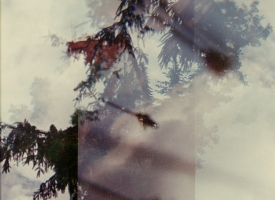 Quintan Ana Wikswo / TINY URN KLITZEKLEINE URNE / Archival Inkjet Print on Hahnemuhle Photo Rag / detail